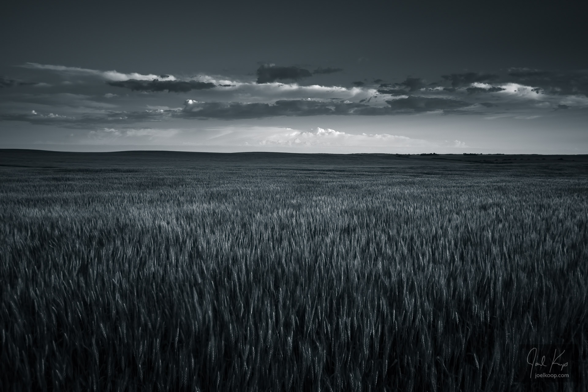 Prairie Fields and Sky