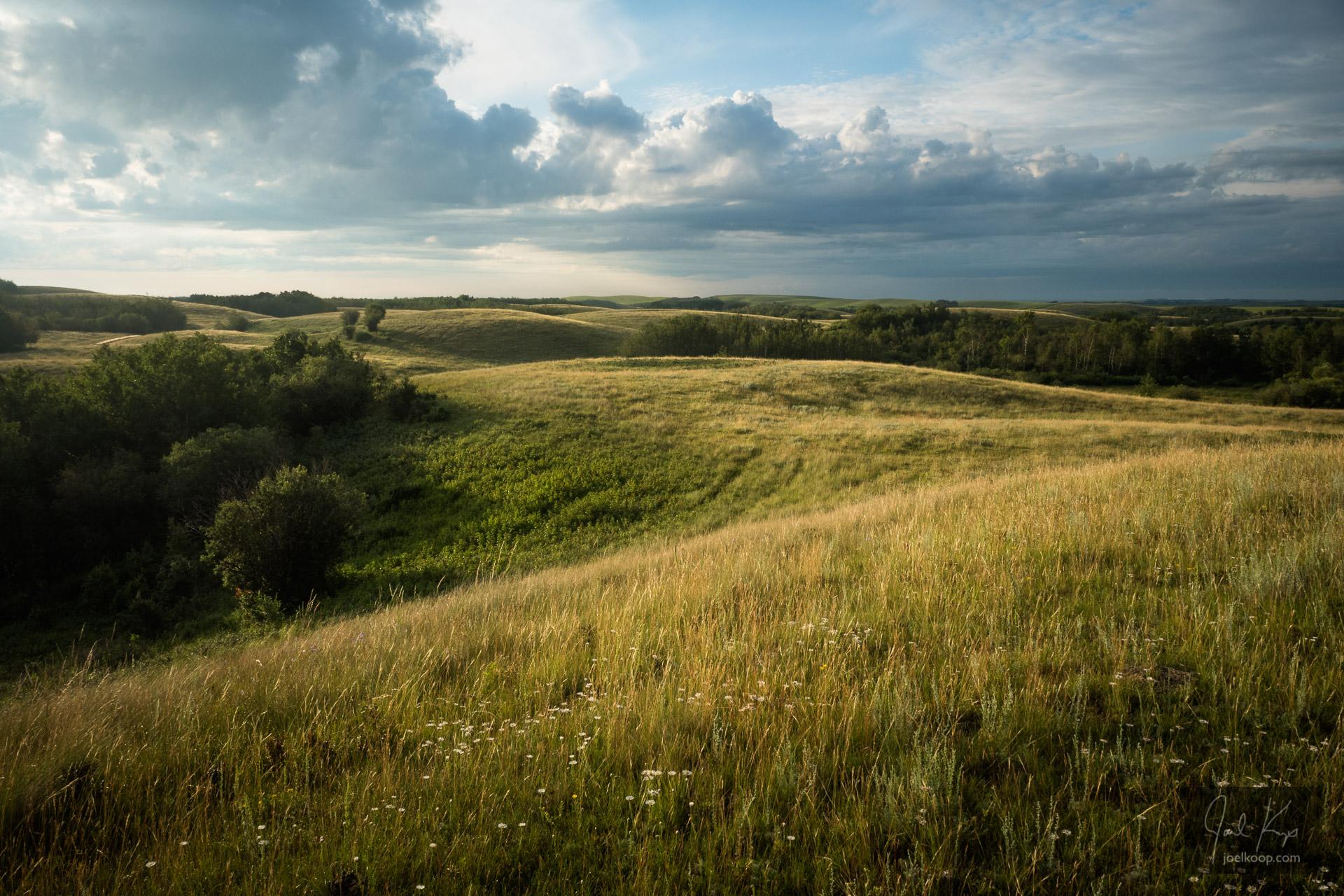 Summer Prairie Hills