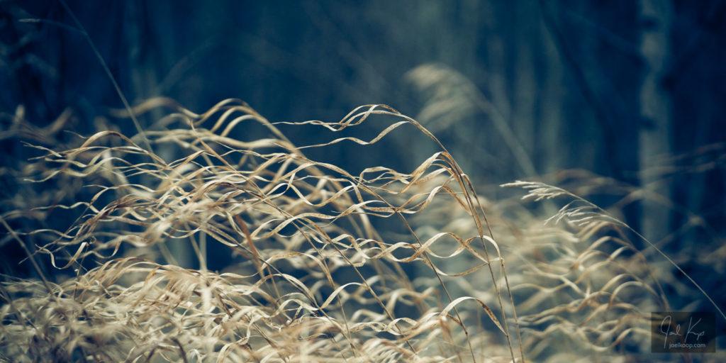 Grass Locks