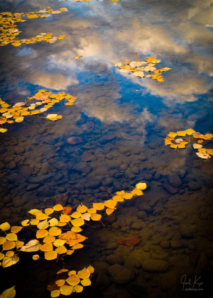 Autumn Wishing Pond